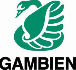 Логотип-Legambiente мод 600